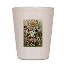 Vintage Orchids Shot Glass