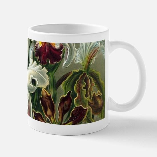 Vintage Orchids Mugs