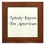 The American Framed Tile