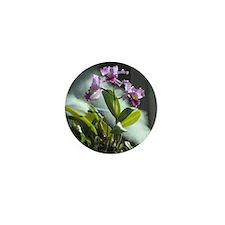 Orchids No. 2 Mini Button