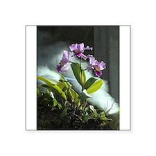 Orchids No. 2 Sticker