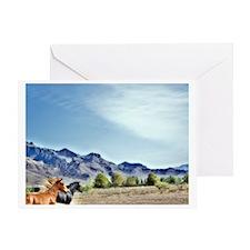 Desert Paso Finos Greeting Card