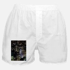 Gotham Boxer Shorts