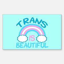 Pretty Trans Decal