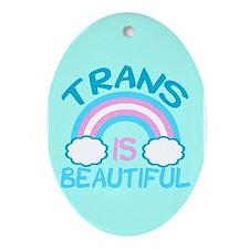 Pretty Trans Ornament (Oval)