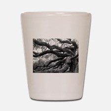 angel-oak-tree-melody-jones Shot Glass