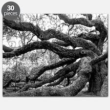 angel-oak-tree-melody-jones Puzzle