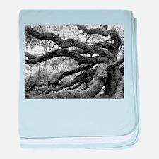 angel-oak-tree-melody-jones baby blanket
