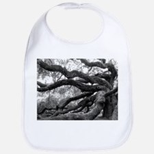 angel-oak-tree-melody-jones Bib