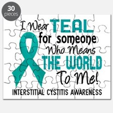 Interstitial Cystitis MeansWorldToMe2 Puzzle