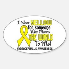 Hydrocephalus MeansWorldToMe2 Decal