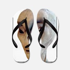 Alien Flip Flops