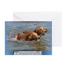 Teamwork is Golden Greeting Cards (Pk of 20)