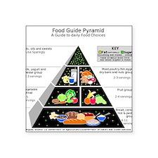 Food Pyramid Sticker