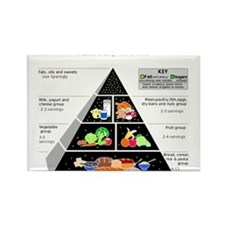 Food Pyramid Magnets