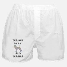 Irish Terrier Slvr Boxer Shorts