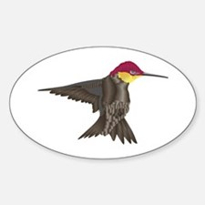 Humming Bird - No Text Decal