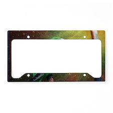 Budgie License Plate Holder