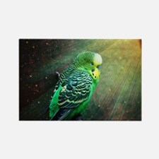 Budgie Rectangle Magnet