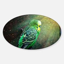 Budgie Sticker (Oval)