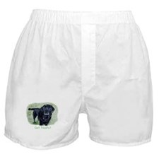Got Treats? Lab Boxer Shorts