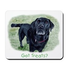 Got Treats? Lab Mousepad