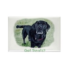 Got Treats? Lab Rectangle Magnet