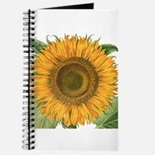 Vintage Sunflower Basilius Besler Journal