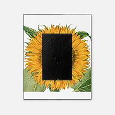 Vintage Sunflower Basilius Besler Picture Frame