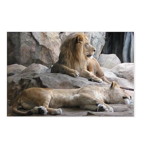 Regal Lion Postcards (Package of 8)