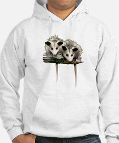 Baby Possums on a Branch Hoodie