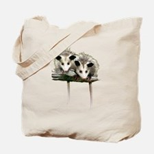 Baby Possums on a Branch Tote Bag
