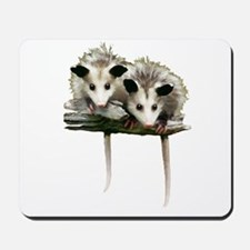 Baby Possums on a Branch Mousepad