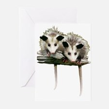 Baby Possums on a Branch Greeting Cards