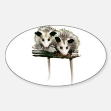 Baby Possums on a Branch Decal