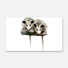 Baby Possums on a Branch Rectangle Car Magnet