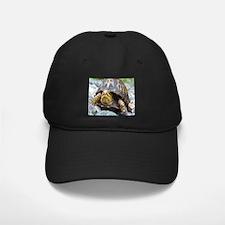 Turtle Baseball Hat