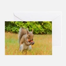 Squirrel Nuts Card Greeting Cards