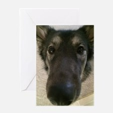 Cute nosey dog Greeting Card