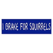 I Brake For Squirrels Bumper Bumper Sticker