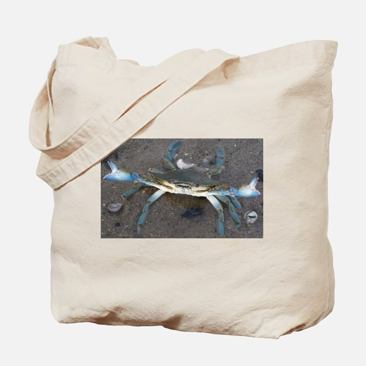 Cape Cod blue tip crab in the tidal pools Tote Bag