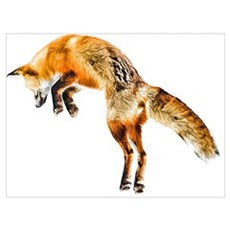 Leaping Fox Canvas Art