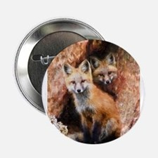 """Fox Cubs in Hollow Tree 2.25"""" Button"""