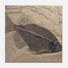 fossil_fish2.png Tile Coaster