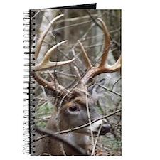 Hideaway Buck Journal