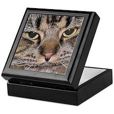 Cat Keepsake Box