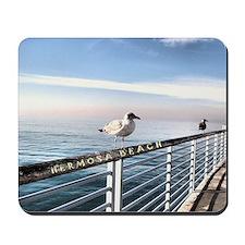 Hermosa Beach birds on a pier Mousepad