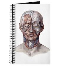 Human Anatomy Face Journal