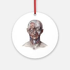 Human Anatomy Face Ornament (Round)