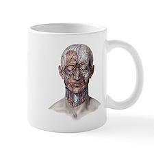 Human Anatomy Face Mugs
